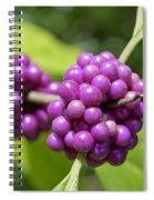 Purple Beautyberries Spiral Notebook