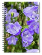 Purple Bell Flowers Spiral Notebook