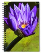 Purple Biltmore Lily  Spiral Notebook