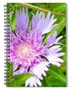Purple Bloom Spiral Notebook