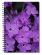 Purple Blossoms Spiral Notebook