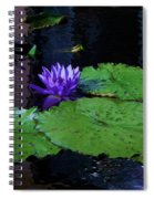 Purple Blue  Lily Spiral Notebook
