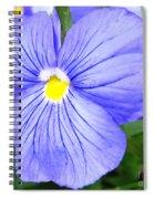 Purple Blue Pansey Spiral Notebook