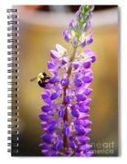 Purple Buzz Spiral Notebook