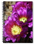 Purple Cacti Flowers Spiral Notebook