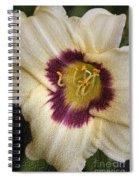 Purple Center Spiral Notebook