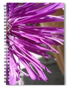 Purple Chinese Aster Spiral Notebook