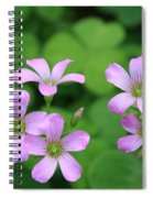 Purple Clover Spiral Notebook
