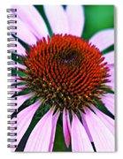 Purple Coneflower Close-up Spiral Notebook