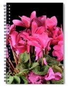 Purple Cyclamen Spiral Notebook