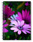 Purple Daisies Spiral Notebook