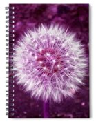 Purple Dandy Spiral Notebook