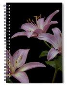 Purple Day Lilies Spiral Notebook