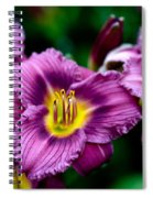Purple Day Lillies Spiral Notebook