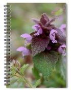 Purple Deadnettle Bloom Spiral Notebook