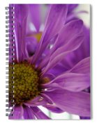 Purple Delight Spiral Notebook