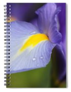 Purple Dutch Iris Flower Macro Spiral Notebook