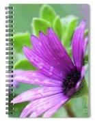 Purple Flower Closeup Spiral Notebook