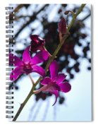 Purple Flowers In The Sky Spiral Notebook