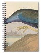 Purple Gallinule Spiral Notebook