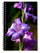 Purple Glads Spiral Notebook