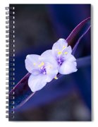 Purple Heart Flowers Spiral Notebook