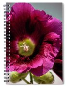 Purple Hollyhock Spiral Notebook