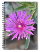 Purple Ice Flower Close Up Spiral Notebook