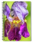 Purple Iris 2018 Spiral Notebook