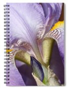 Purple Iris Beauty Spiral Notebook