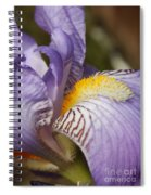 Purple Iris Closeup Spiral Notebook