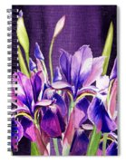 Purple Iris Dance  Spiral Notebook