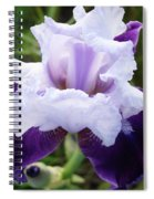 Purple Iris Flower Art Prints Garden Floral Baslee Troutman Spiral Notebook