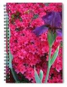 Purple Iris In Pink 2  Spiral Notebook
