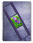 Purple Iris Passion Spiral Notebook