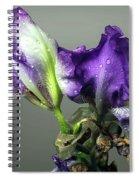 Purple Iris Water Drops Spiral Notebook
