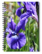 Purple Irises Spiral Notebook