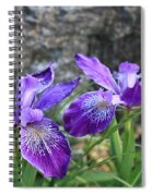 Purple Irises With Gray Rock Spiral Notebook
