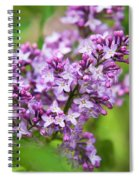 Purple Lilac Flowers Spiral Notebook