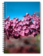 Purple Lilac Spiral Notebook