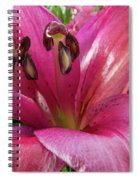 Purple Lilly In A Flower Bouquet Extreme Close-up Spiral Notebook