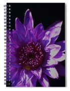 Purple Lily Monet Spiral Notebook