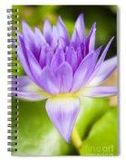 Purple Lotus Blossom Spiral Notebook