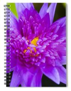 Purple Lotus Spiral Notebook
