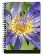 Tropical Purple Water Lily Spiral Notebook