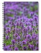 Purple Meadow 3 Spiral Notebook