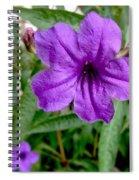 Purple Mexican Petunia Spiral Notebook