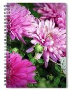 Purple Mums Spiral Notebook