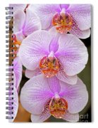 Purple Orchid 1 Spiral Notebook