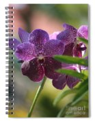Purple Orchid Beauty Spiral Notebook